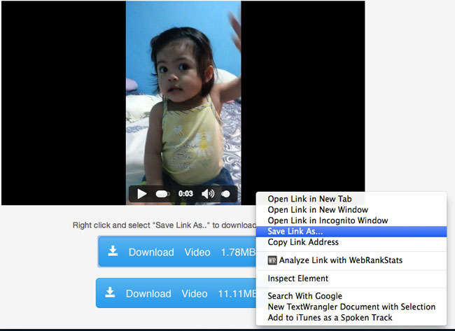 Download-private-facebook-video-step-4