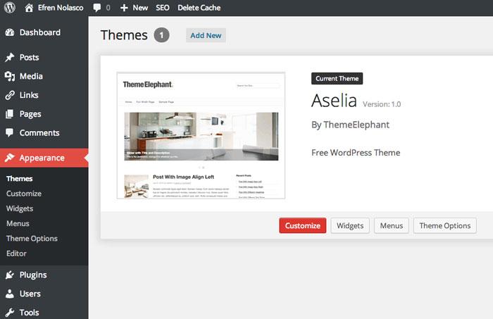 Site Appearance Customization