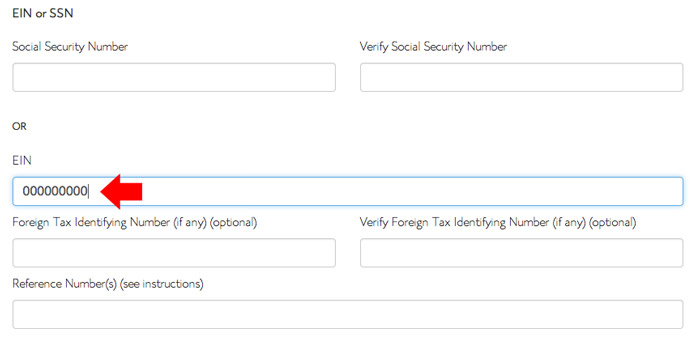 How-to-fill-out-Bluehost-tax-form3