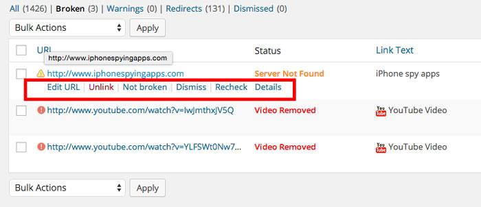 Detect-and-Fix-Broken-Links-on-WordPress-Website3
