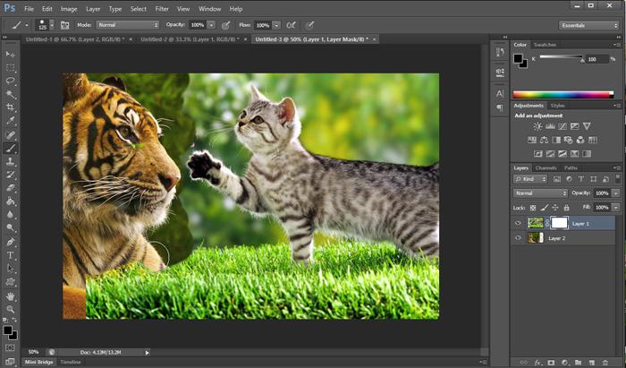 Photoshop Tutorial: Understanding Layer Mask